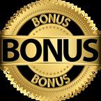 snf academy bonus.png