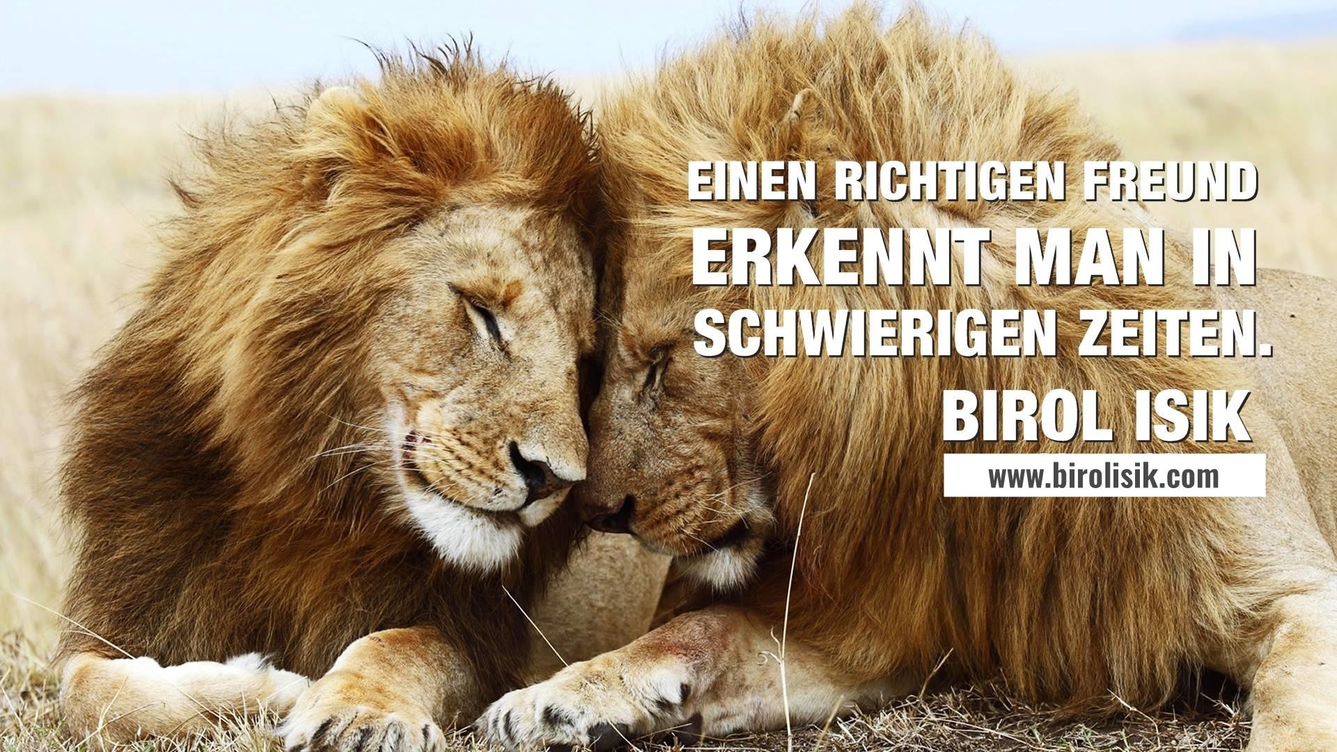 persönlichkeitsentwicklung_glarus_schwei