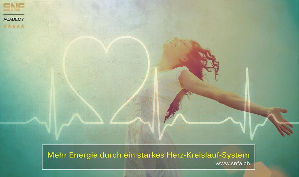Blog Herz-Kreislauf-System