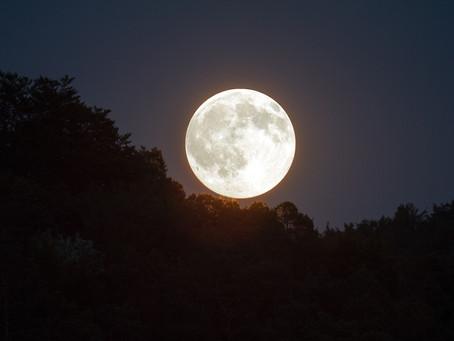 Les cercles de pleine lune en conscience