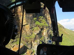 Inventering med heikopter