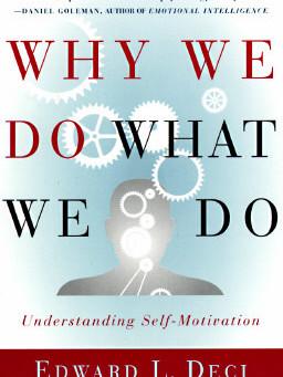 Por que facemos o que facemos?