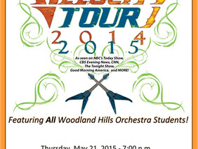 Electrify Your Strings with Woodland Hills