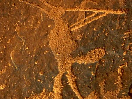 Basil Braveheart, Standing Rock, and Art