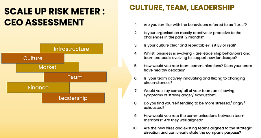 scale up risk meter.png