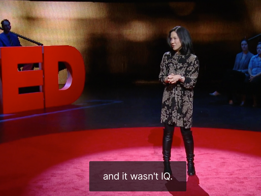 Ted talk recommendation: What makes you successful?