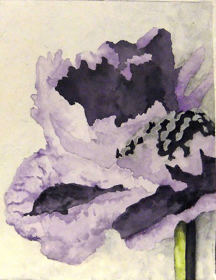Fresco w Silver Gilding (Poppy).JPG