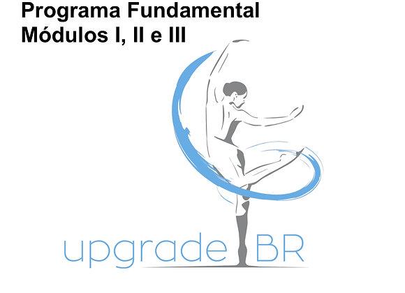 Curso de Capacitação | Programa Fundamental | Módulos I, II e III