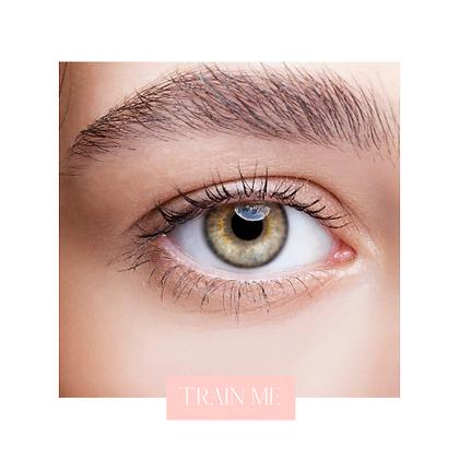 Eyebrow Lamination Training