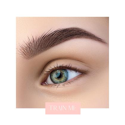 Ombré Powder Eyebrows Training