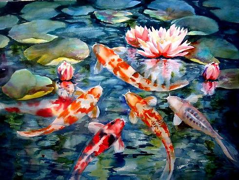 koi-fish.jpg