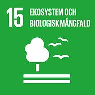 15_ekosystem.png