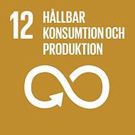 12-hallbar-konsumtion-och-produktion.png