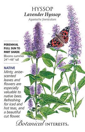 Hyssop Lavender Seeds