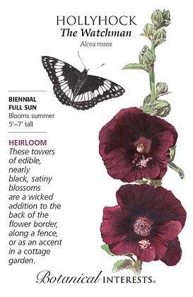 Hollyhock The Watchman Seeds