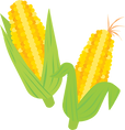 corn-vegetable-food-clipart-md.png