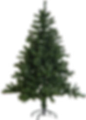 323-3233550_real-christmas-tree-plain.pn