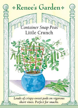 Peas Snap Container Little Crunch Seeds