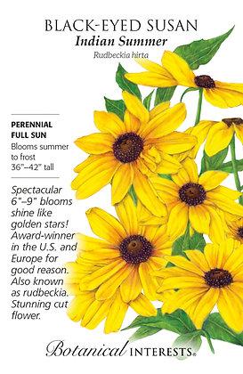 Black Eyed Susan Indian Summer Seeds