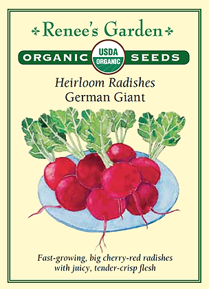 Radish German Giant Organic Seeds