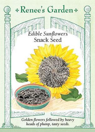 Sunflower Snack Seed Edible Seeds