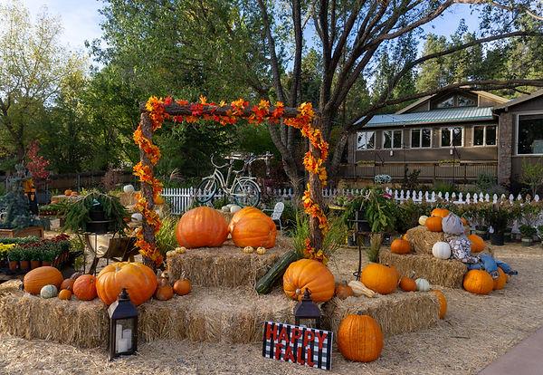 October Arch2.jpg