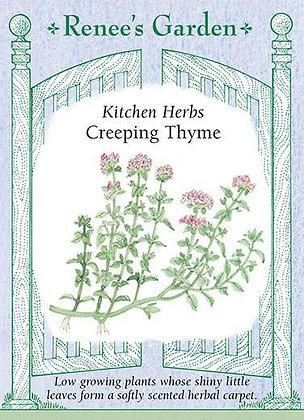 Thyme Creeping Seeds