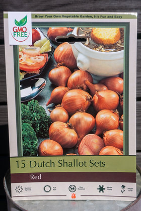 Onion Dutch Red Shallots 15