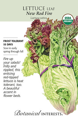 Lettuce New Red Fire Seeds