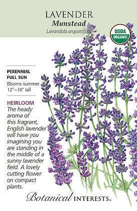 Lavender Dwarf Munstead Seeds