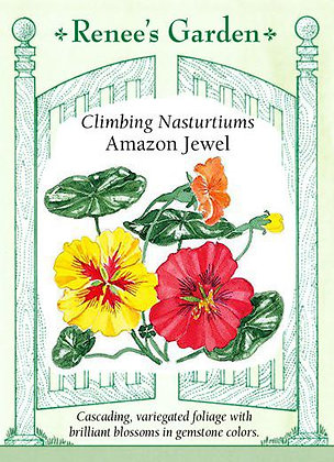 Nasturtium Amazon Jewel Seeds