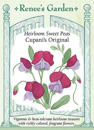 Sweet Pea Cupanis Original Seeds