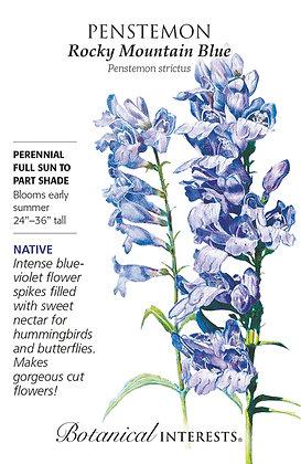 Penstemon Rocky Mountain Blue Seeds