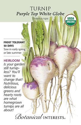 Turnip Purple Top White Globe Seeds
