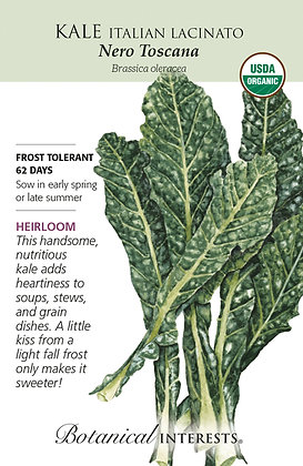 Kale Italian Nero Seeds