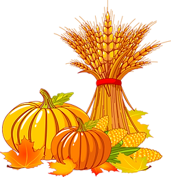 clipart-thanksgiving-wheat-12.png