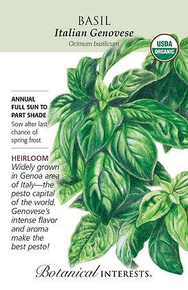 Basil Italian Genovese Seeds