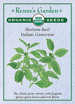 Basil Italian Genovese Organic Seeds