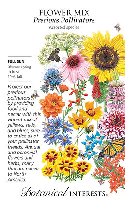 Large-Precious Pollinators Seeds