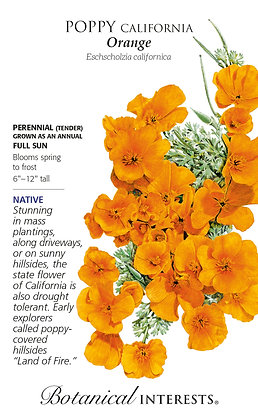 Large-Poppy California Orange Seeds