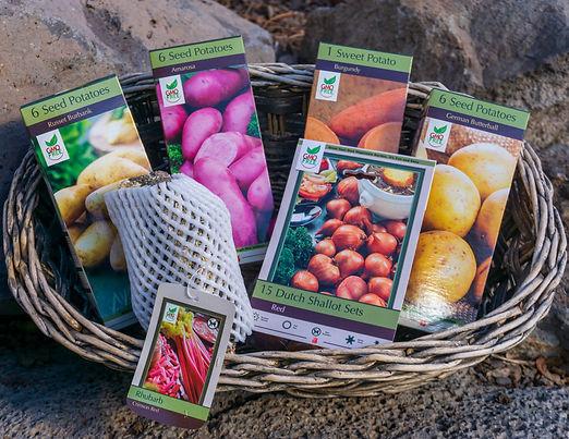 Potatoes, Rhubarb, Onion Bareroot2.jpg