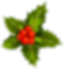 Transparent_Christmas_Mistletoe_Clipart.