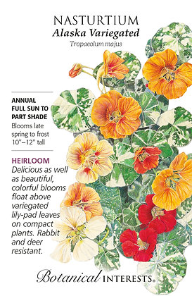 Nasturtium Alaska Variegated Seeds