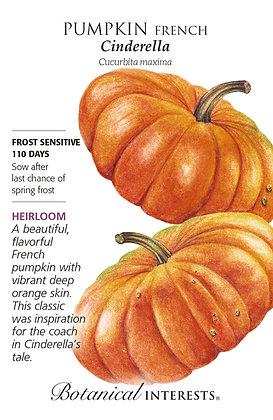 Pumpkin Cinderella Seeds