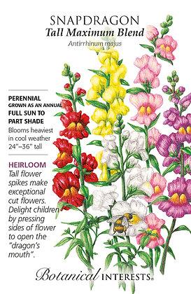 Snapdragon Tall Maximum Blend Seeds