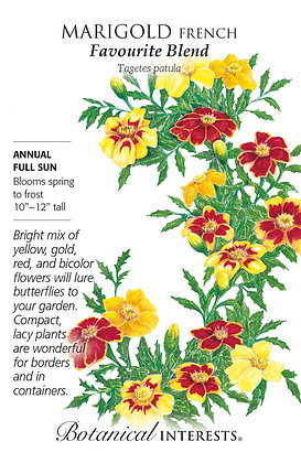 Marigold French Favourite Blend Seeds