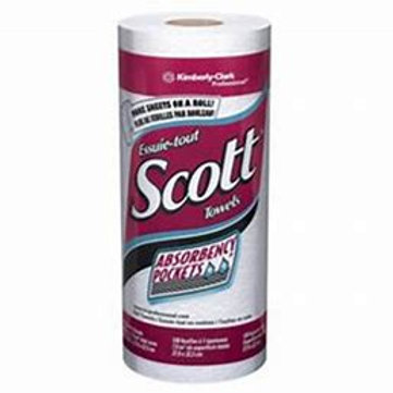 Scott 2ply Paper Towel (single roll or case of 48)
