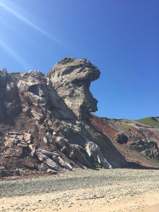 Tête de Singe sur la plage de L'Échouerie