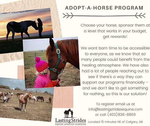 Adopt-A-Horse.png