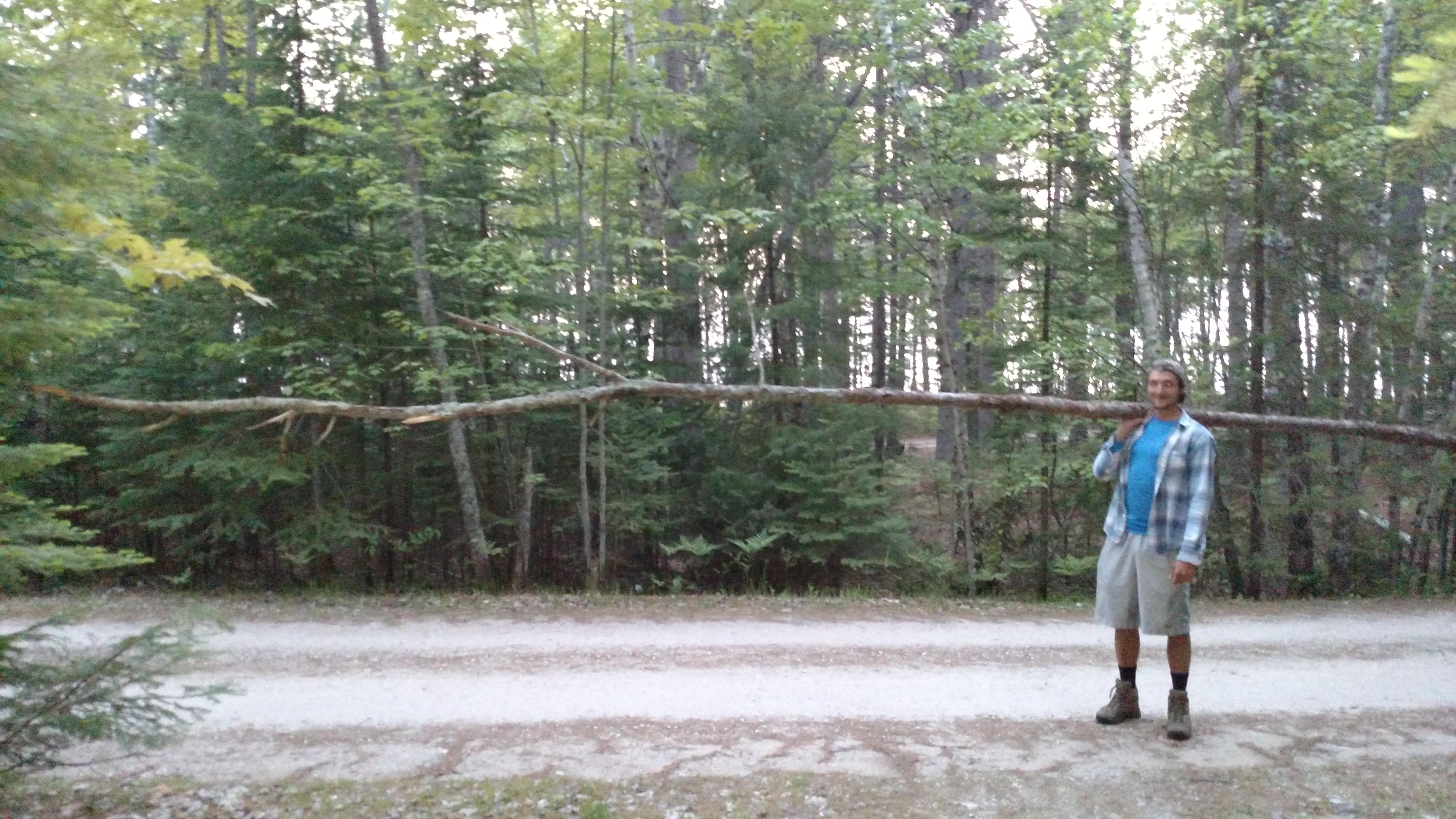 Lumber-Jacking